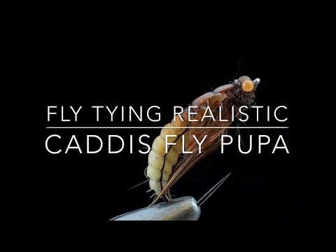 Fly Tying Realistic Caddis Fly Pupa