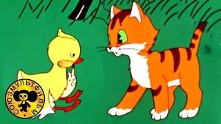 Вот так тигр | Советские мультфильмы для малышей
