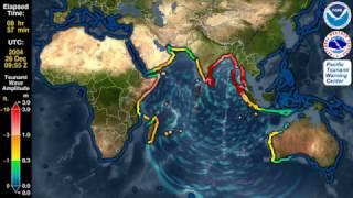 Цунами. Высота волны цунами 2004 в Индийском океане .