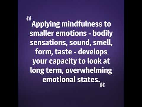 The Mindfulness Experience 2