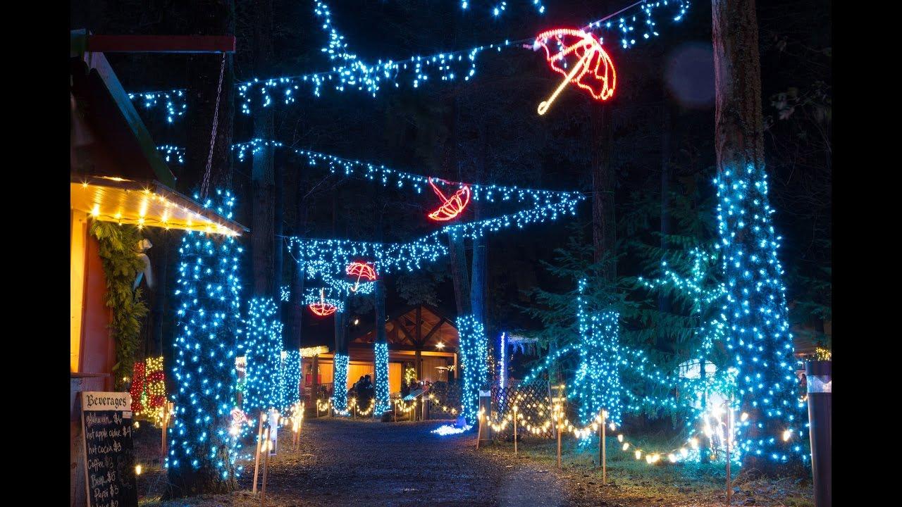 christmas in the garden 2015 youtube