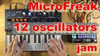 MicroFreak: 12 oscillator arpeggiator jam (with Empress ZOIA)