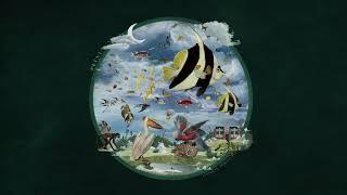"""Plini – """"IMPULSE VOICES"""" (Full Album)"""