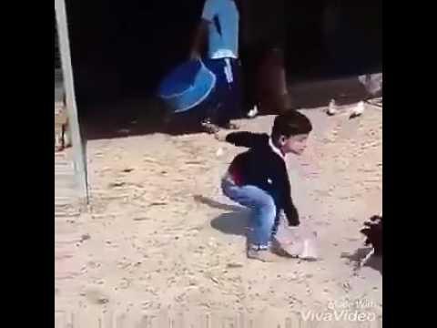 мальчики показывают питухи