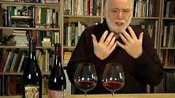 Oregon Pinots: McMinnville vs Yamhill-Carlton l Wine Spectator