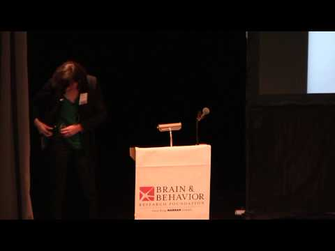 2012 Neidorf Memorial Lecture - The Effects of Ketamine on Dopamine and Depression