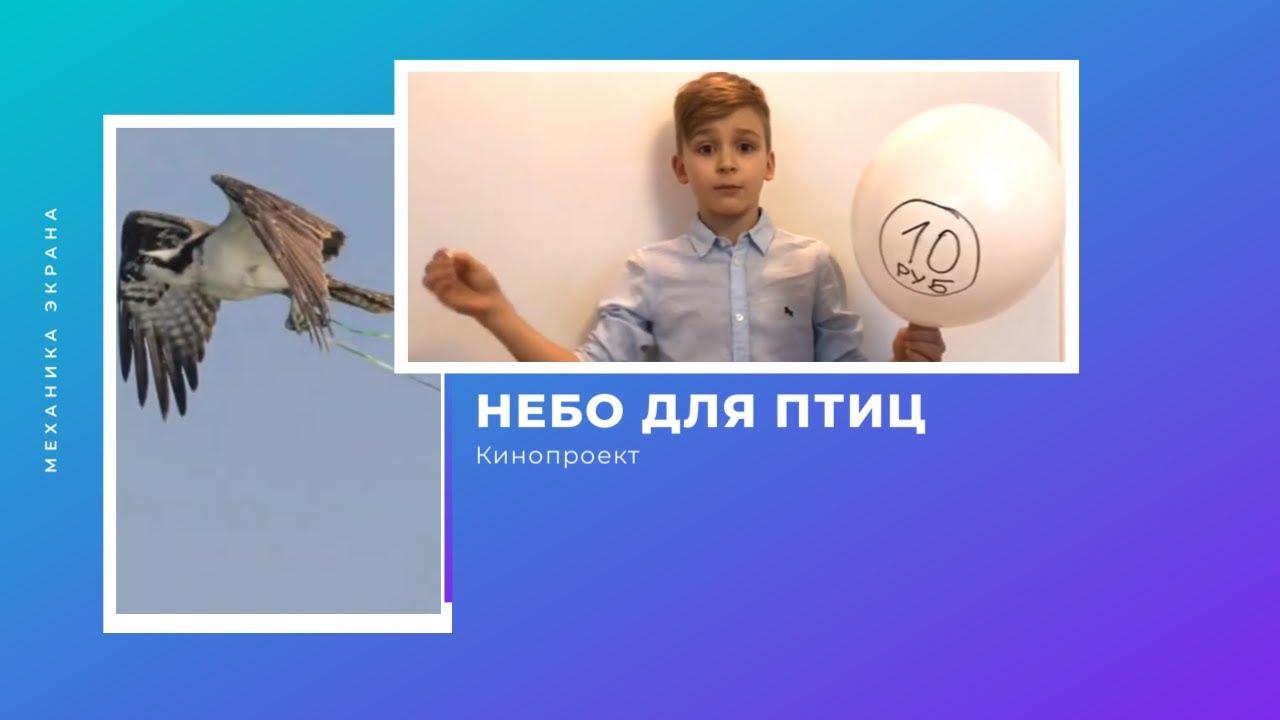 "Кинопроект ""Небо для птиц"""