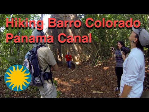 Panama Canal by small Boat and Hiking on Barro Colorado Island