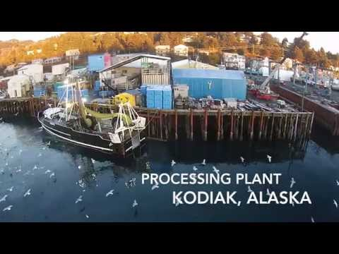 Global Seafoods | Watch  how Globalseafoods produce their seafood