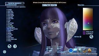 Final Fantasy XIV Benchmark and New Race Look