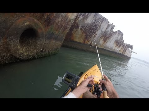 Catching Crazy Fish at Concrete Sunken War Ships!