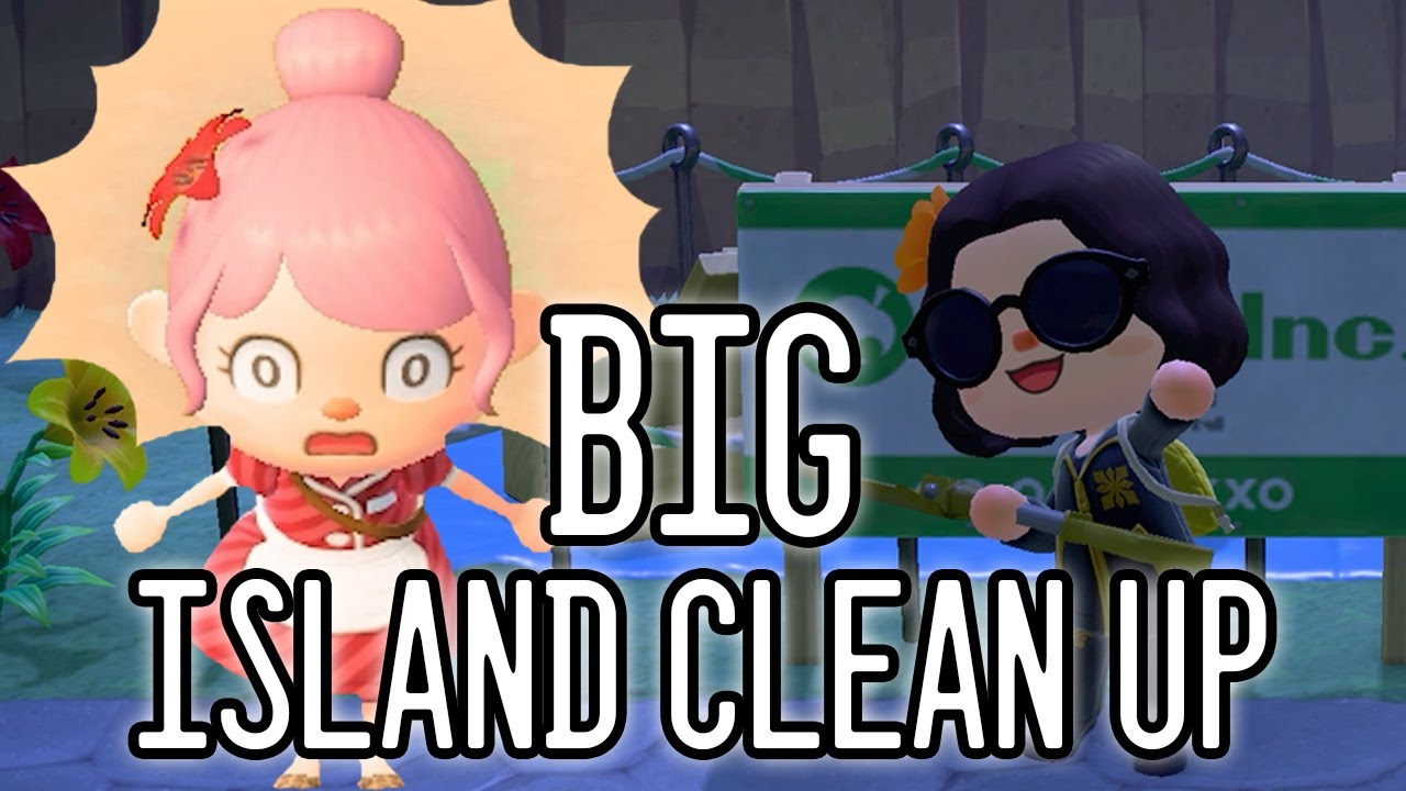 Post Rock Garden Whole Island Clean Up | Animal Crossing ...