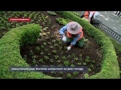 НТС Севастополь: Севастопольские фонтаны заработают ко Дню города