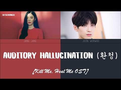 [ENG/ROM/HAN] Jang Jaein (장재인) & SEVENTEEN Wonwoo (세븐틴 원우) - Auditory Hallucination (환청)   SMA