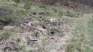 전원주택지 국유림과 청정계곡에 싸인 마을 최상단 전원주…