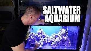 Saltwater aquarium setup - The scape