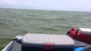 Pontoon boat in Gulf waves, no problem.