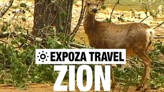 Zion (USA) Vacation Travel Video Guide