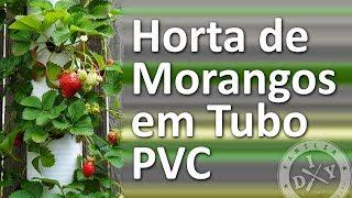Aprenda a Fazer Uma Horta de Morango Com um Cano PVC