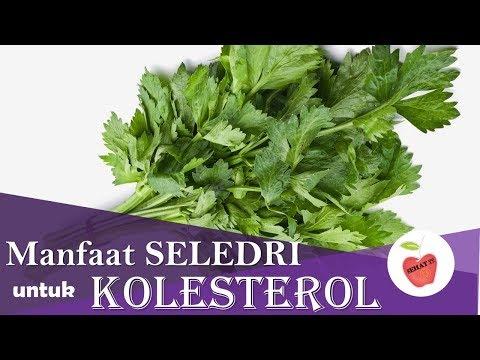 terbongkar!!,,-manfaat-seledri-untuk-kolesterol-tinggi-paling-ampuh-dan-murah