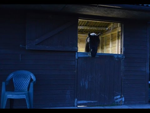 Stable Lights, for horse stables with no mains electricity, solar lights, remote control