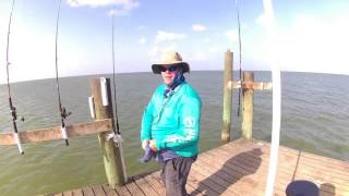 Texas City Dike Catfish, Sand Trout, and Blue Crab this time