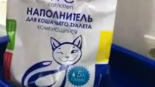 Отзыв клиента. Наполнитель для кошачьего туалета.  г.Тюмень