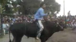 iguana de acamilpa vs  Rama gacha rancho las cubatas