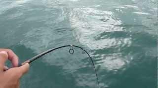 Singapore Fishing 80 by thoptimumfishing