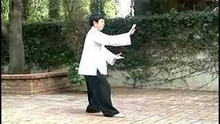 What do we learn from Yang Style Tai Chi?