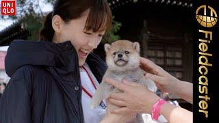 CMでは俳優の光石研さんと三浦貴大さんが親子役で感動パンツを穿いて登場します。 犬の譲渡会でボランティアとして働く綾瀬さんを通して一匹の犬と出会い、新しい一歩を ...