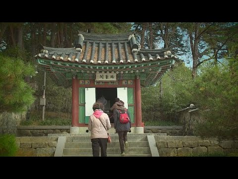 Gangneung: enjoy Olympics and authentic Korean culture - sport