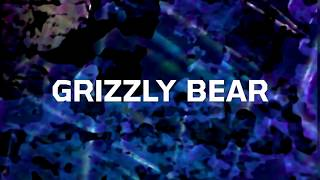 GRIZZLY BEAR - Live in Miami Beach