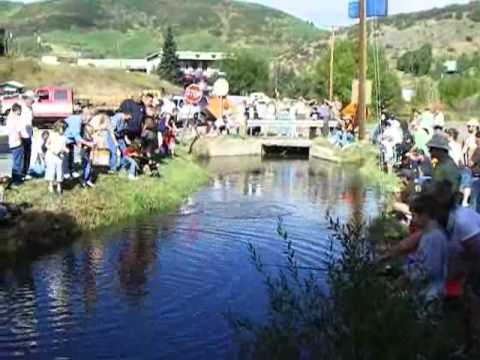 Multi-Species Fishing on AZ's Oak Creek from YouTube · High Definition · Duration:  12 minutes 43 seconds  · 1.000+ views · uploaded on 03.09.2016 · uploaded by JacobInTheLunchroom