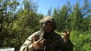 видео На Алтае начался сбор ранних сортов облепихи