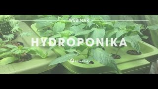 Hydroponika i domowe uprawy bezglebowe [Cohabitat Webinar]