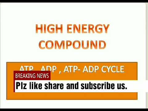 High energy compound and ATP_  ADP cycle.