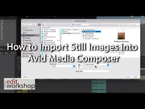 How to Import Still Images into Avid Media Composer
