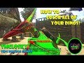 Ark PS4: How To COLOR All Of Your DINOS!