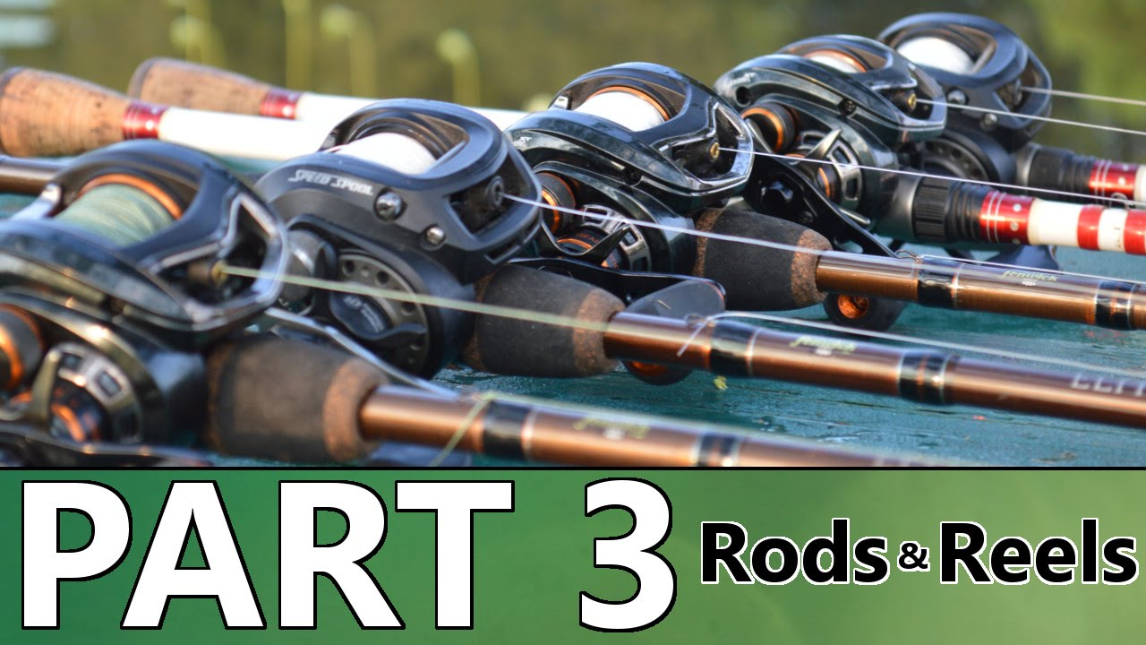 Beginner's Guide to BASS FISHING - Part 3 - Rods and Reels - YouTube