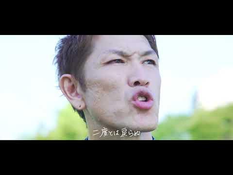 SHACHI - ヒマワリ [official MV]