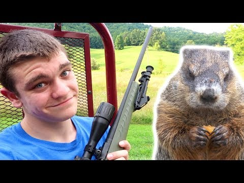 Kendall Gray Vs. Unauthorized Ground Hog