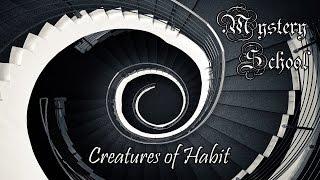 Mystery School: Creatures of Habit