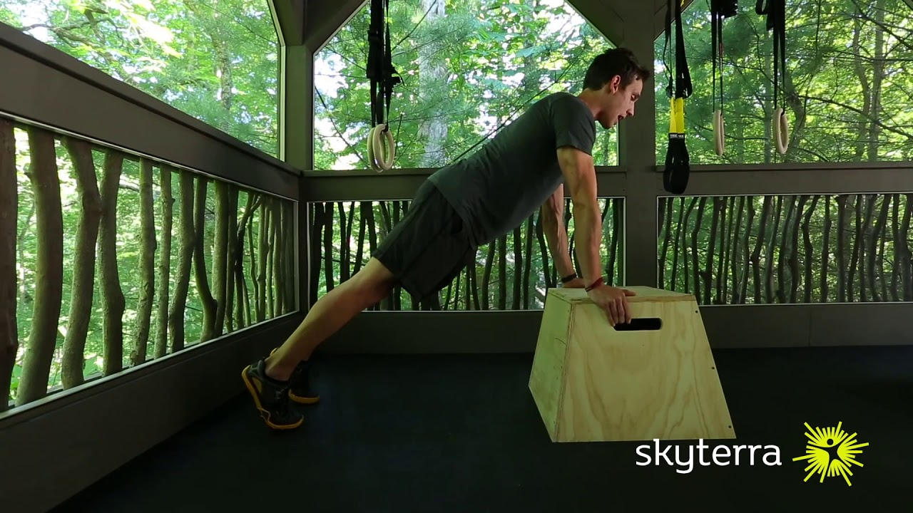 Movement Library: The Push-Up