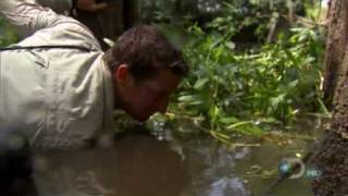 Bear Grylls fishing catfish