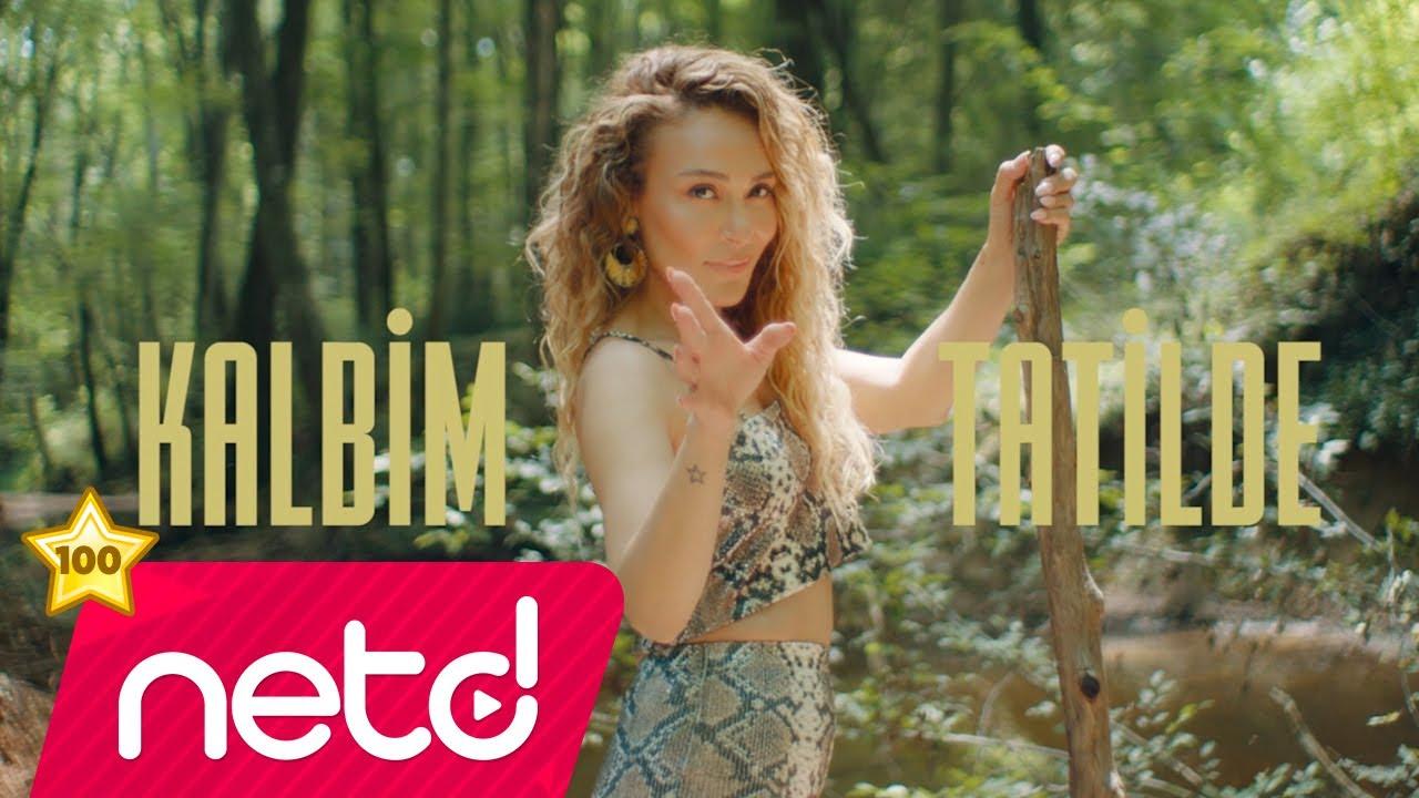 Ziynet Sali - Efkarım Var ( Fatih Yılmaz Remix )
