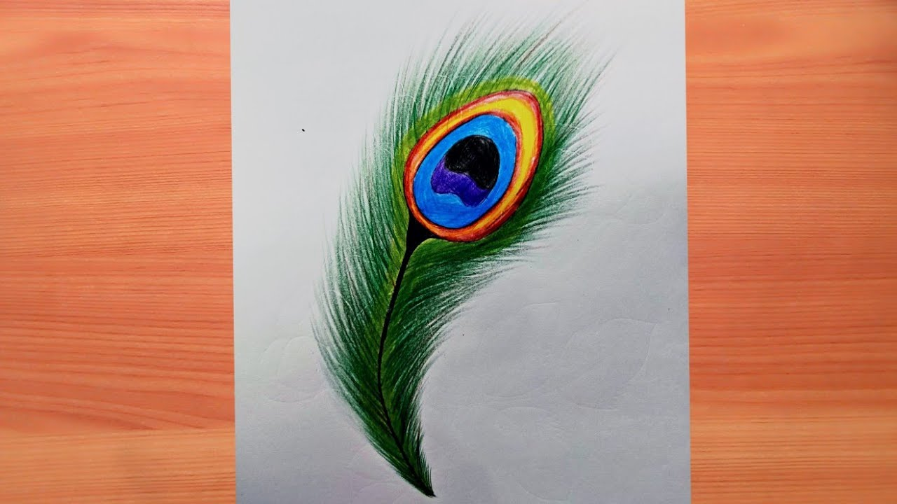How to draw beautiful peacock feathers with color pencil ...