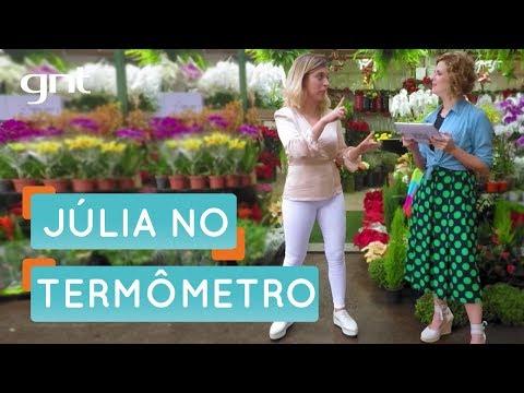 Júlia Rabello é a maior bagunceira que você respeita | Organização | Santa Ajuda | Micaela Góes