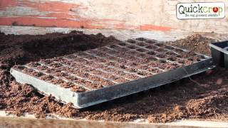 Sowing Seeds in a Modular Tray