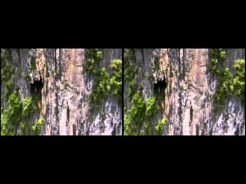 4K 3D Planet Earth Amazing Nature Scenery Side By Side